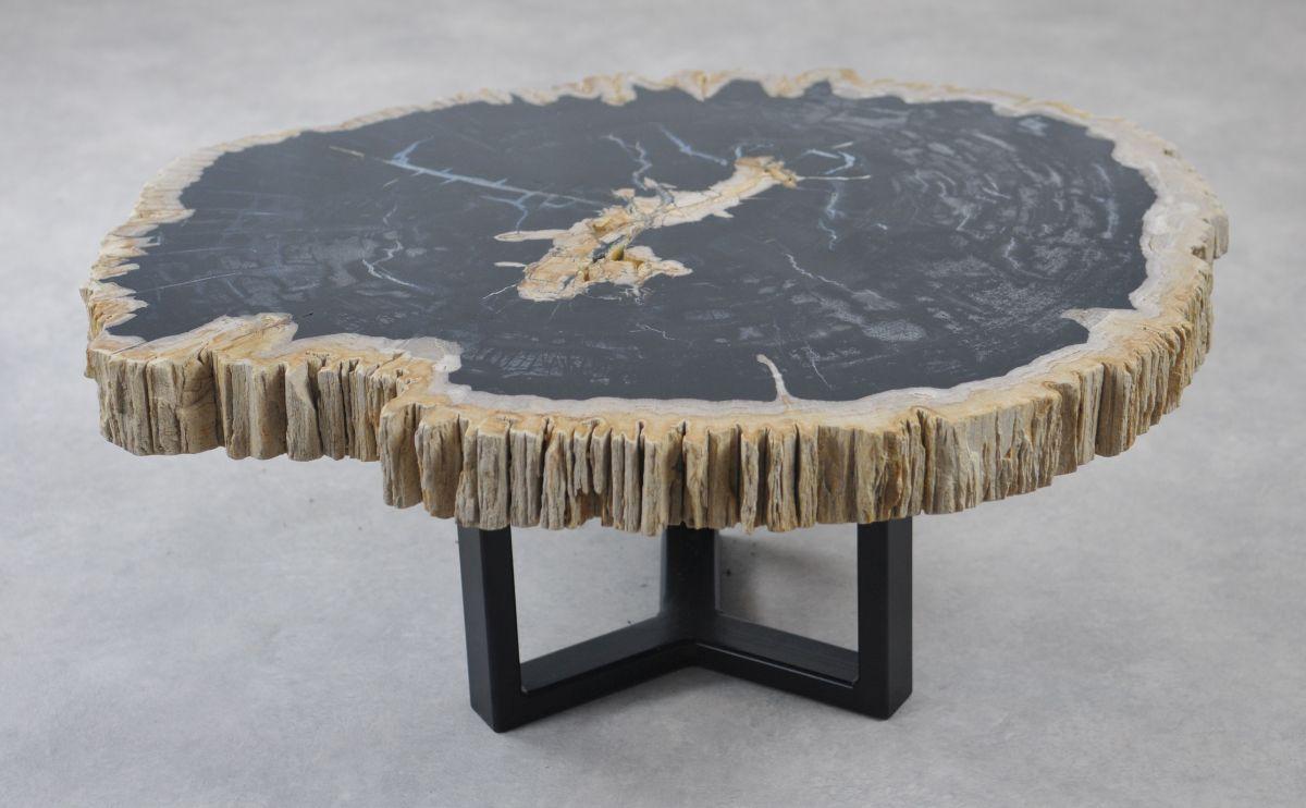 Table basse bois pétrifié 35162