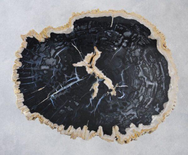 Table basse bois pétrifié 35164