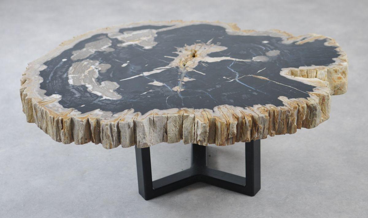 Table basse bois pétrifié 35166