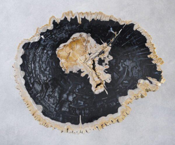 Table basse bois pétrifié 35167