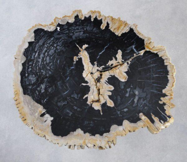 Table basse bois pétrifié 35168