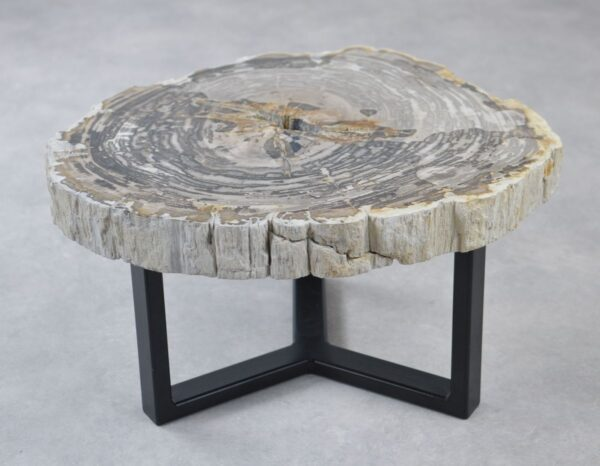 Table basse bois pétrifié 35176
