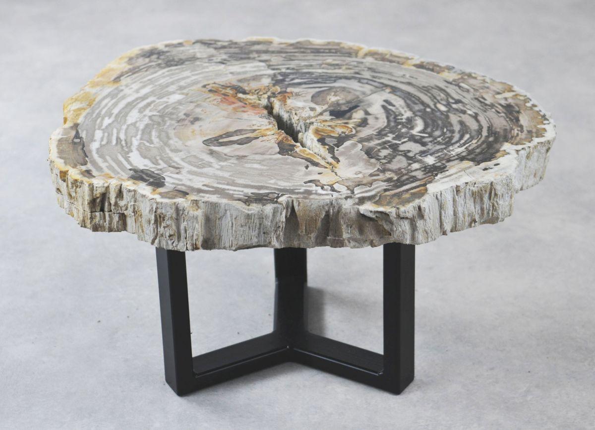 Table basse bois pétrifié 35177