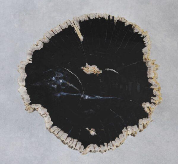 Table basse bois pétrifié 35181