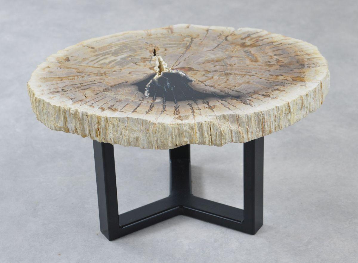Table basse bois pétrifié 35186