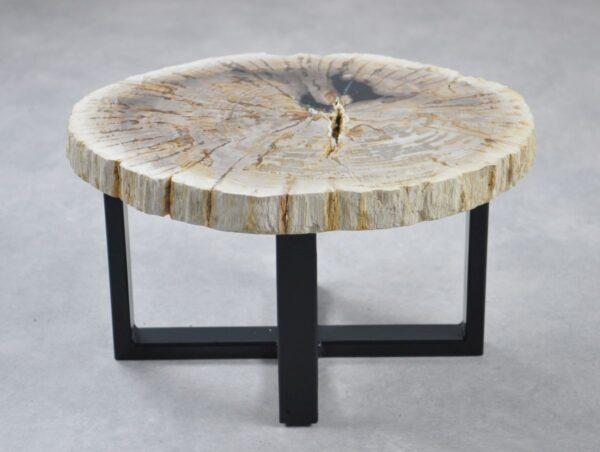 Table basse bois pétrifié 35188