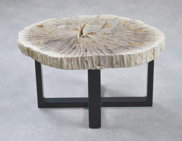 Table basse bois pétrifié 35189