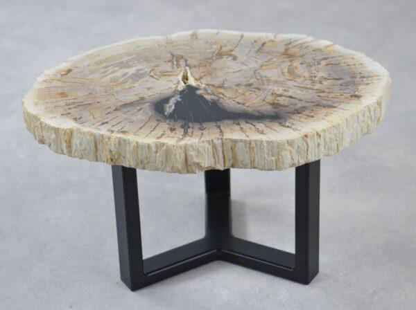 Table basse bois pétrifié 35190