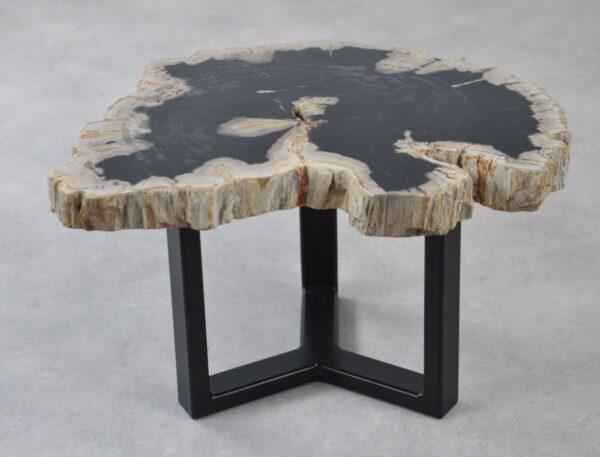 Table basse bois pétrifié 35193