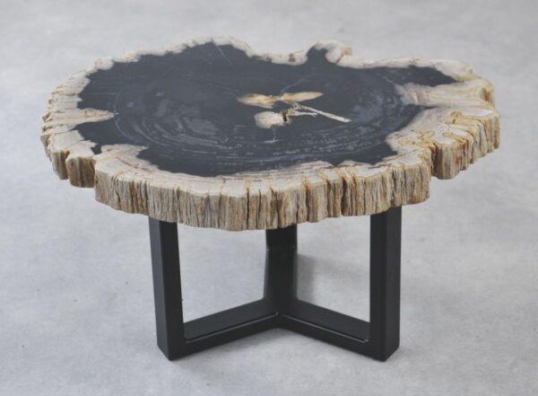 Table basse bois pétrifié 35197
