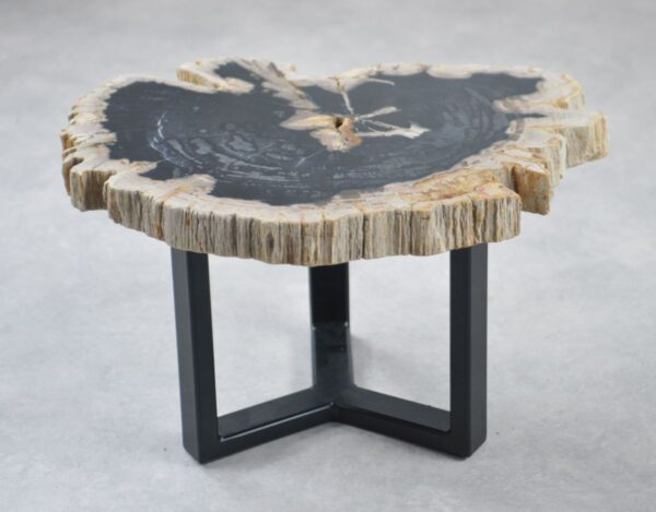 Table basse bois pétrifié 35200