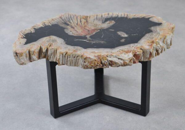 Table basse bois pétrifié 35207
