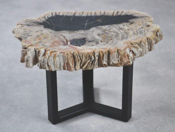 Table basse bois pétrifié 35209