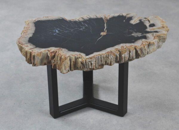 Table basse bois pétrifié 35210