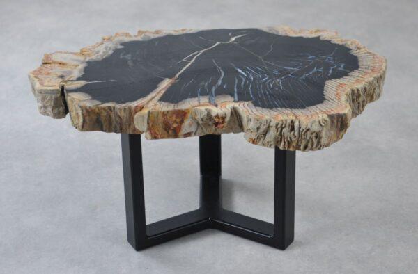 Table basse bois pétrifié 35211