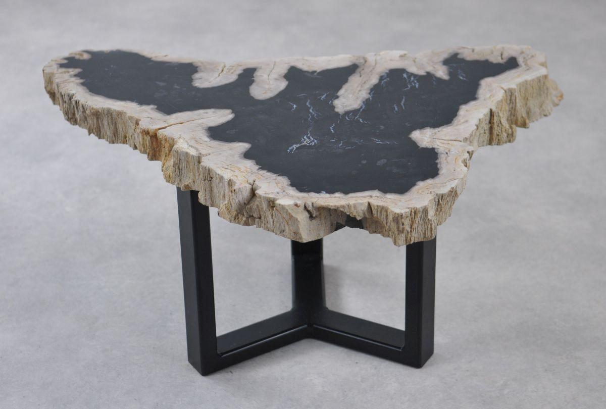 Table basse bois pétrifié 35215