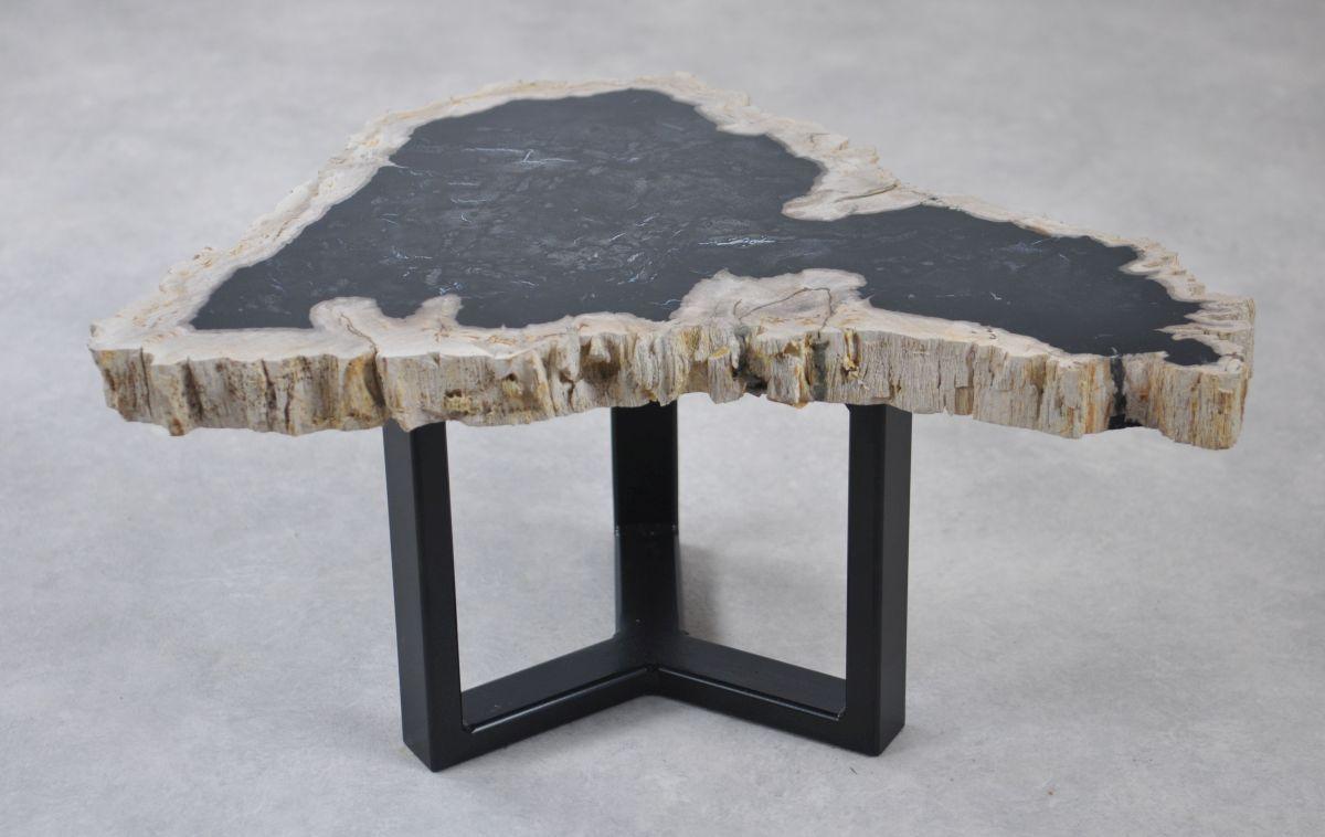 Table basse bois pétrifié 35217