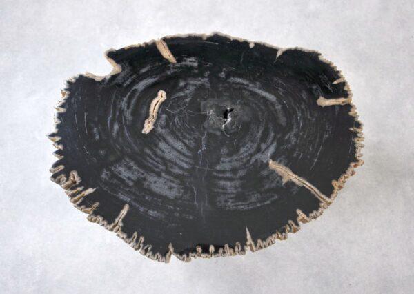 Table basse bois pétrifié 35219