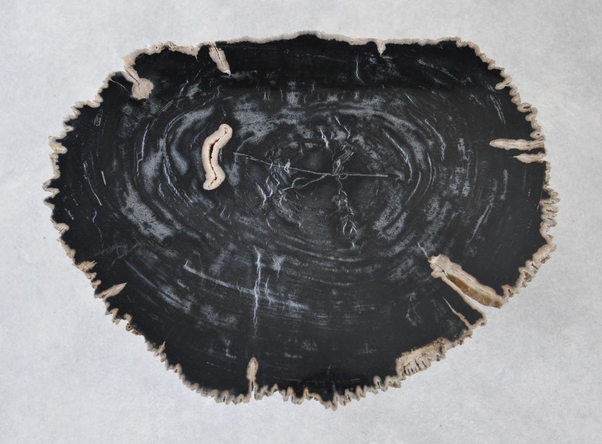 Table basse bois pétrifié 35221