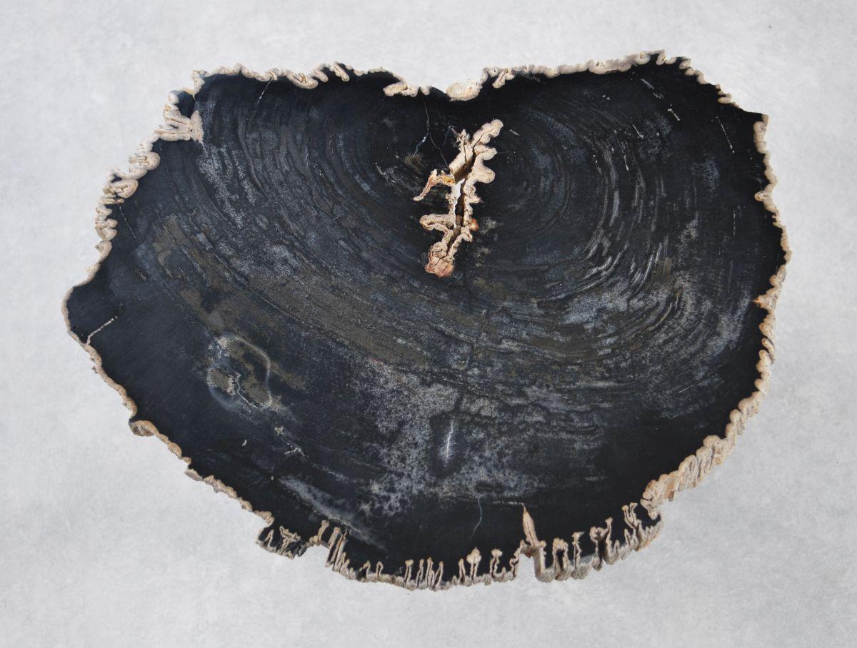 Table basse bois pétrifié 35226