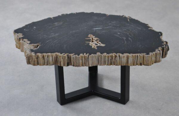 Table basse bois pétrifié 35229