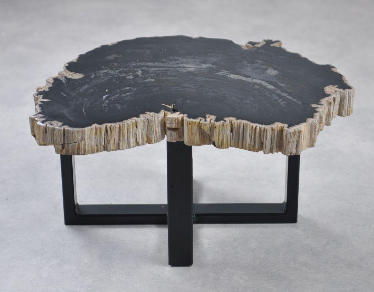 Table basse bois pétrifié 35232