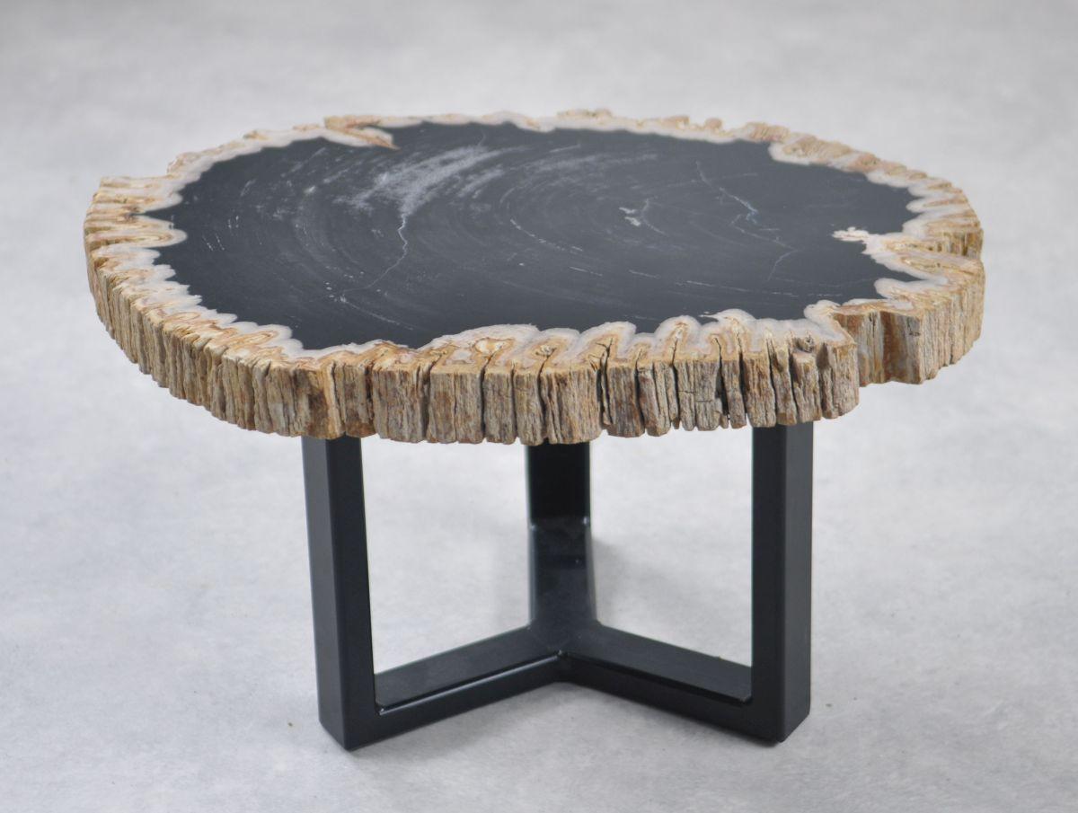 Table basse bois pétrifié 35233