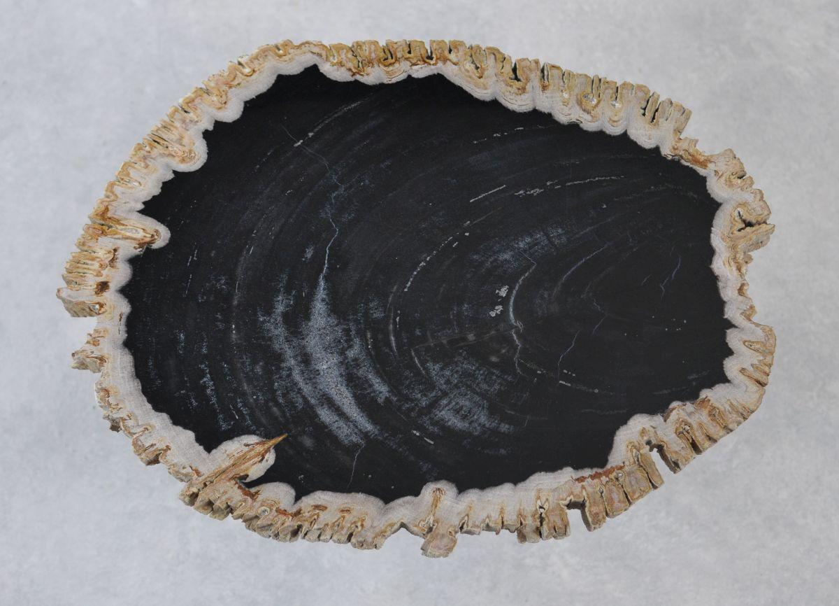 Table basse bois pétrifié 35234