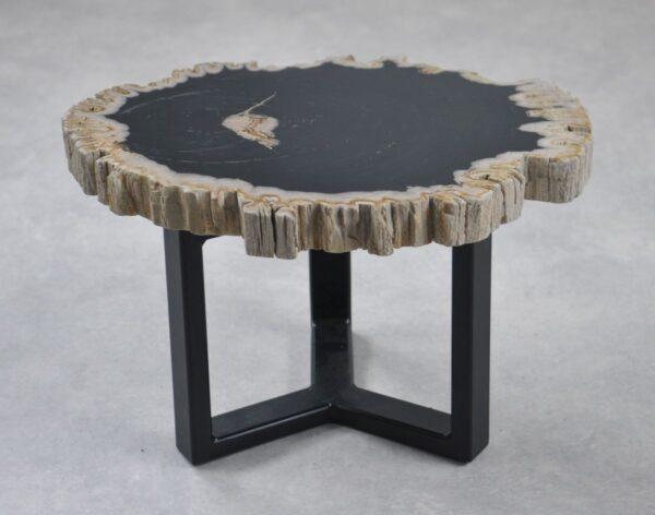 Table basse bois pétrifié 35239