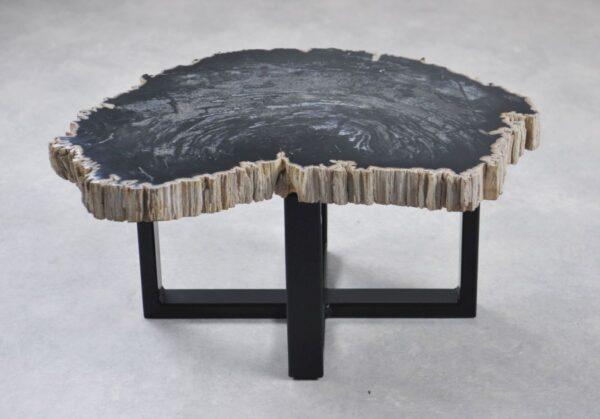 Table basse bois pétrifié 35244