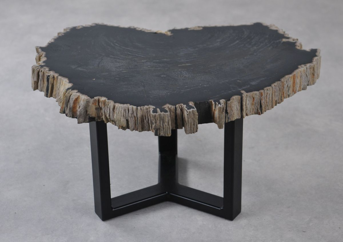 Table basse bois pétrifié 35248