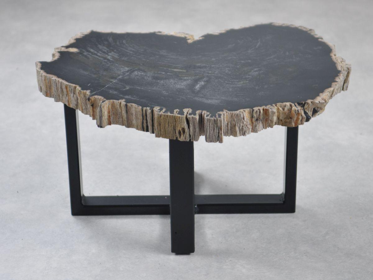 Table basse bois pétrifié 35249