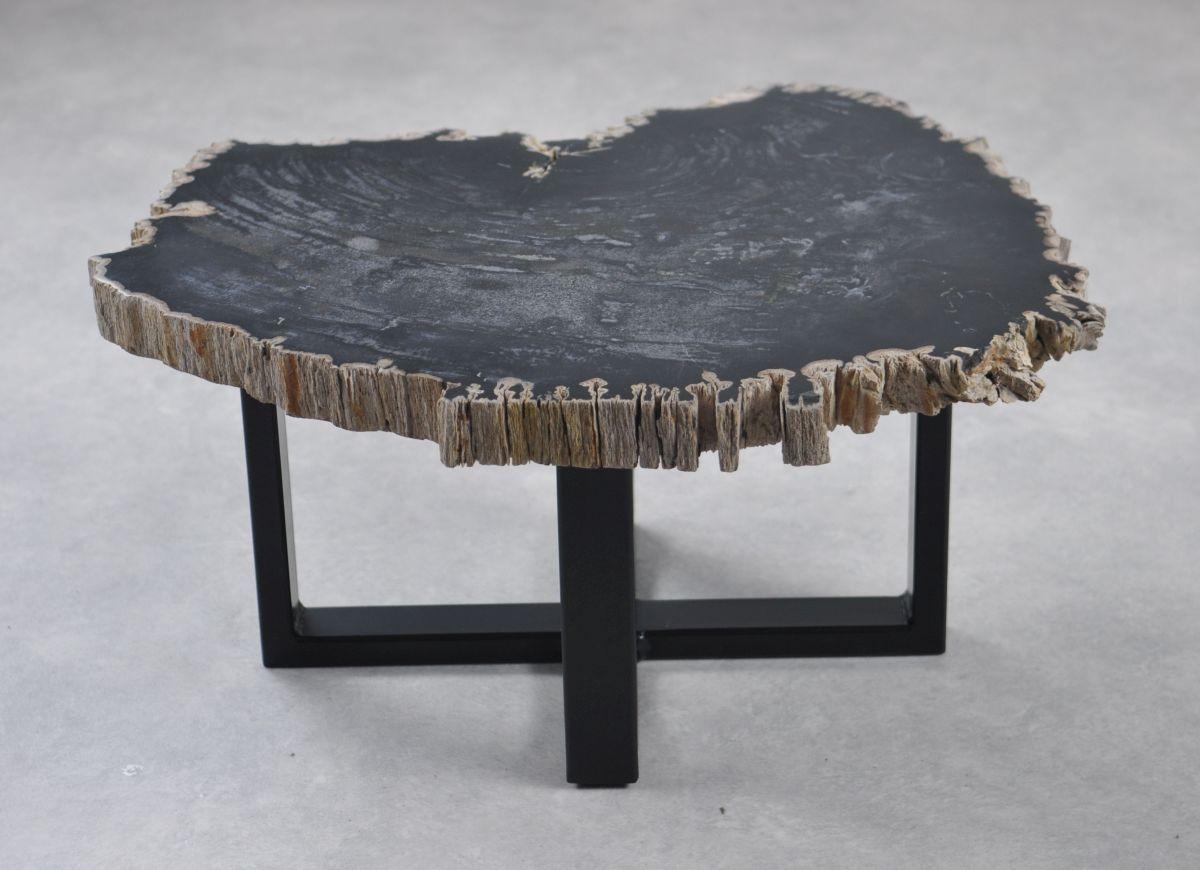 Table basse bois pétrifié 35250