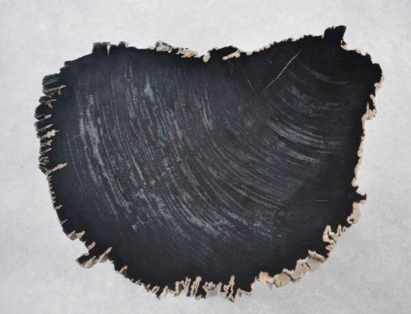 Table basse bois pétrifié 35252