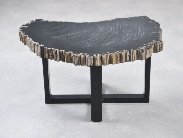 Table basse bois pétrifié 35253