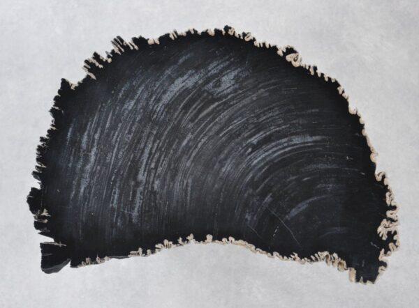 Table basse bois pétrifié 35256