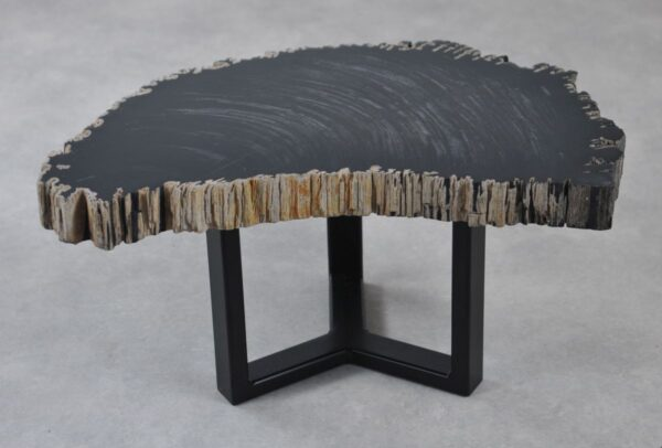Table basse bois pétrifié 35258