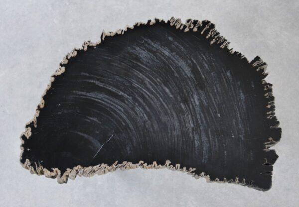 Table basse bois pétrifié 35259