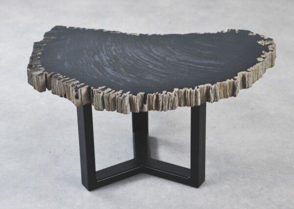 Table basse bois pétrifié 35261