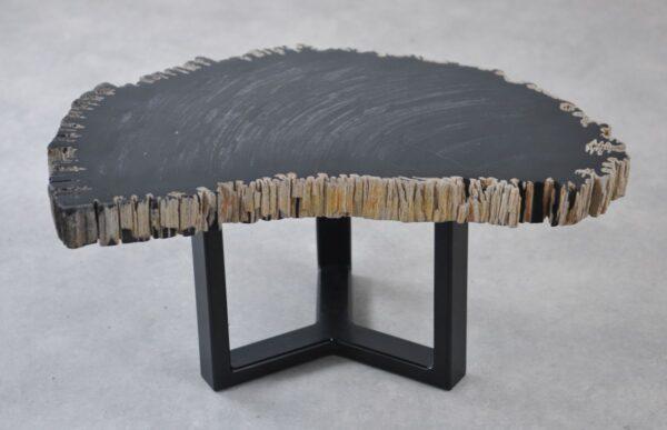 Table basse bois pétrifié 35262
