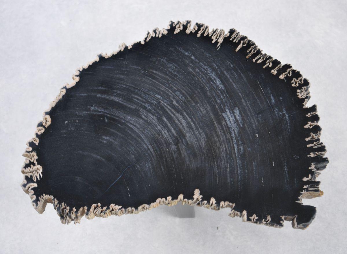 Table basse bois pétrifié 35263
