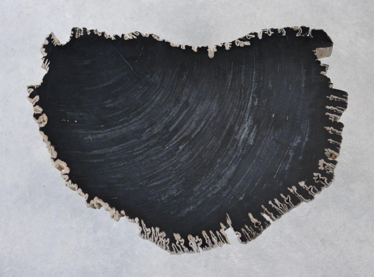 Table basse bois pétrifié 35265