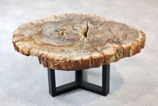 Table basse bois pétrifié 35273