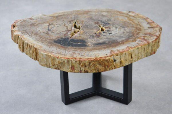 Table basse bois pétrifié 35274