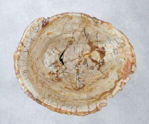 Table basse bois pétrifié 35278