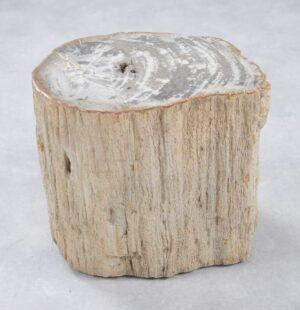 Table d'appoint bois pétrifié 34005