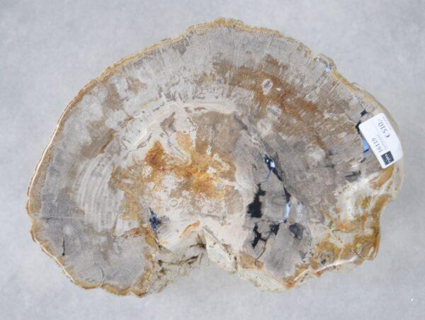 Beistelltisch versteinertes Holz 16119