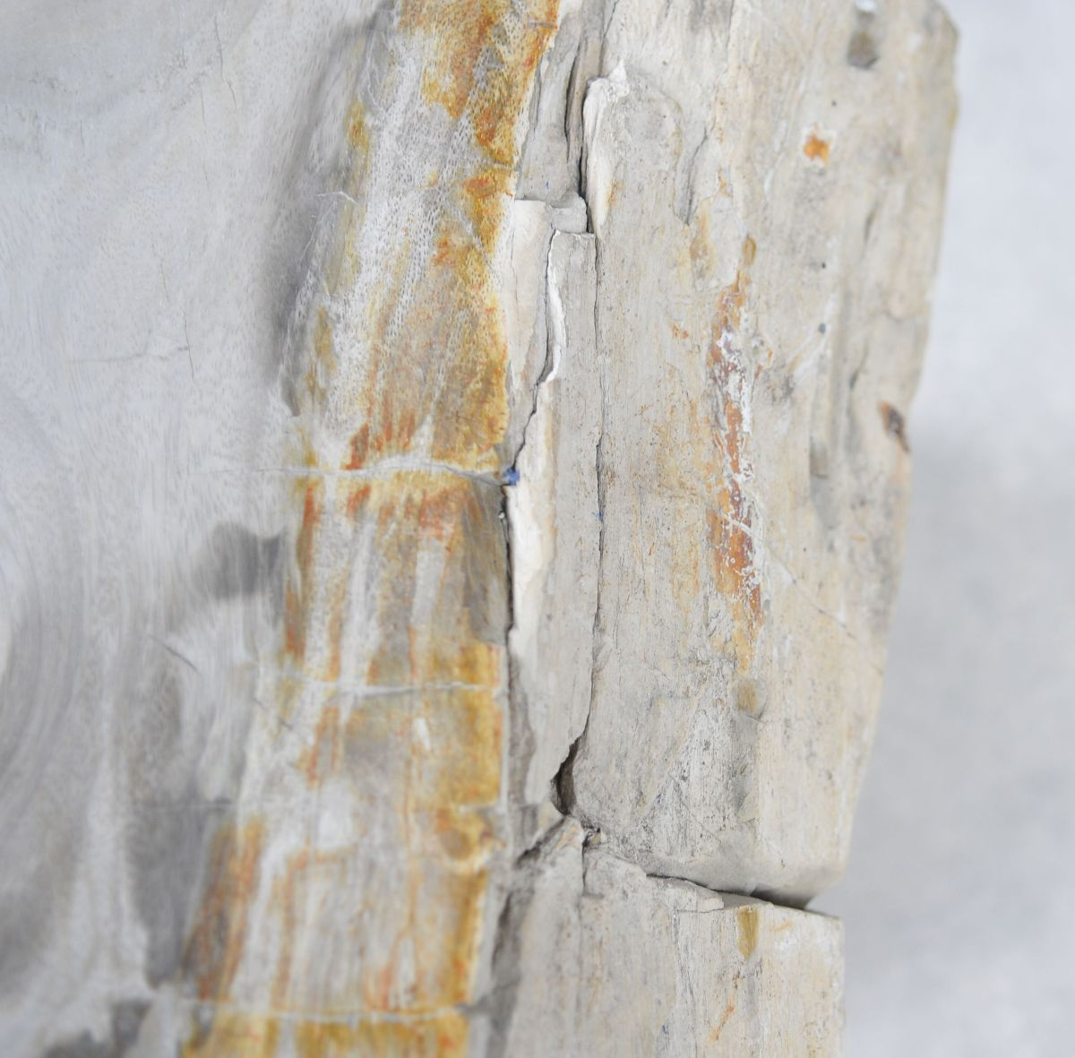 Beistelltisch versteinertes Holz 24014