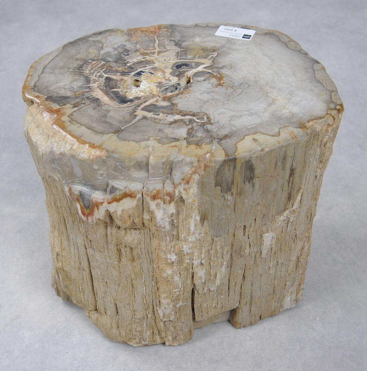 Beistelltisch versteinertes Holz 29014