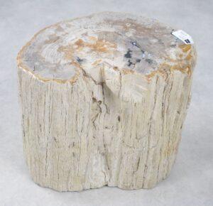 Bijzettafel versteend hout 16119